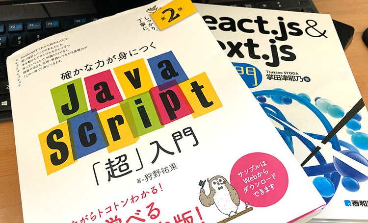 筆者が所有しているJavaScriptが勉強できる書籍